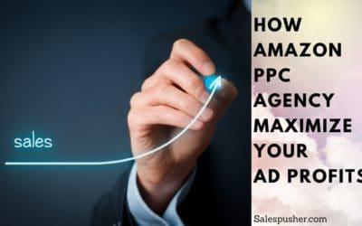 Amazon PPC Agency